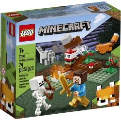 LEGO 21162 La Aventura en...