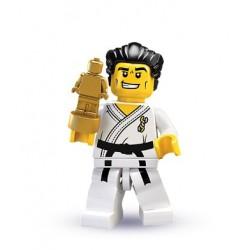 Maestro de Karate